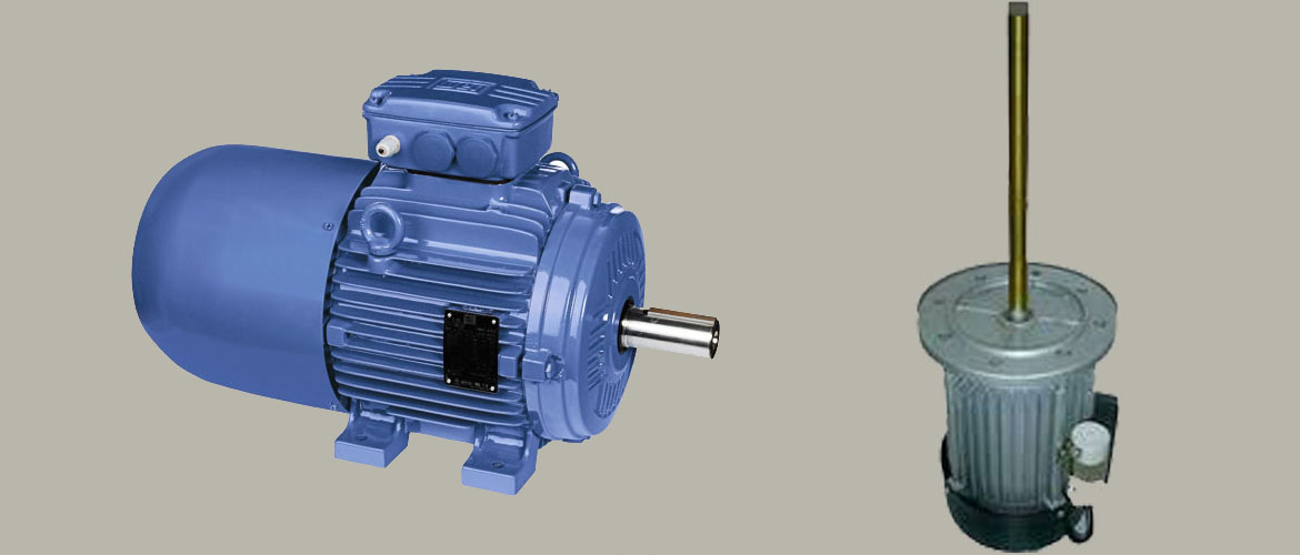 Heavy Duty Electric Motors & Industrial Electric Motors